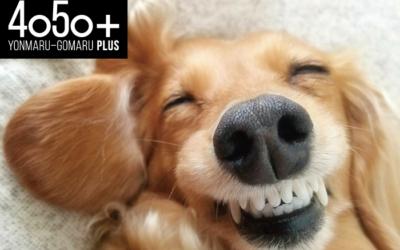 笑顔はお手軽な美容健康法?